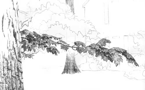 DRAWING TREE FOLIAGE part 1 - BALLPOINT PEN DRAWING ...